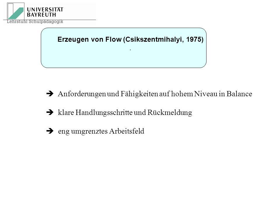  Anforderungen und Fähigkeiten auf hohem Niveau in Balance  klare Handlungsschritte und Rückmeldung  eng umgrenztes Arbeitsfeld Erzeugen von Flow (