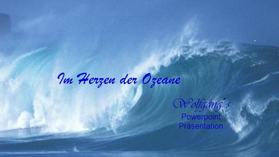 Wolfgang´s Powerpoint Präsentation. Im Herzen der Ozeane