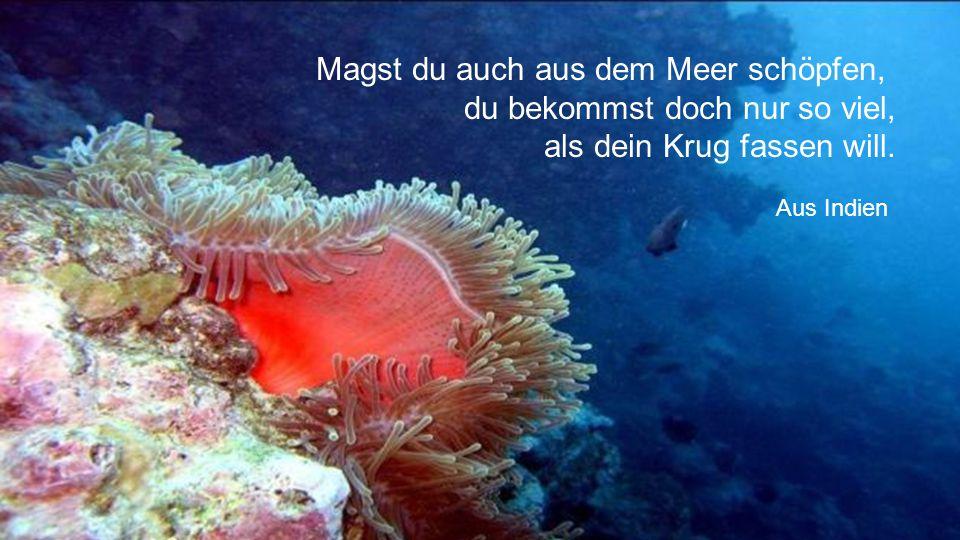 O glücklich, wer noch hoffen kann Aus diesem Meer des Irrtums aufzutauchen! Was man nicht weiß, das eben brauchte man, Und was man weiß, kann man nich