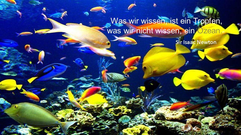 Was wir wissen, ist ein Tropfen, was wir nicht wissen, ein Ozean. Sir Isaac Newton
