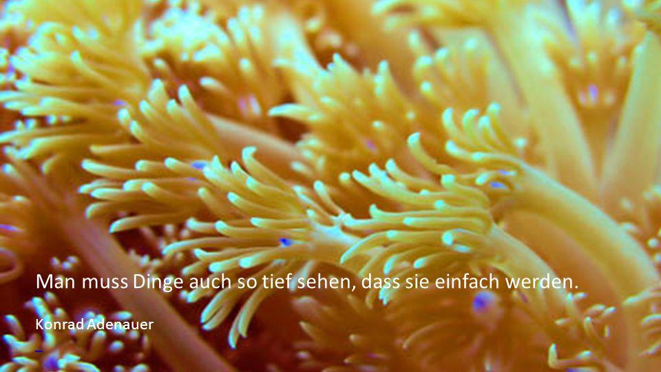 Das Meer ist keine Landschaft, es ist das Erlebnis der Ewigkeit. Thomas Mann