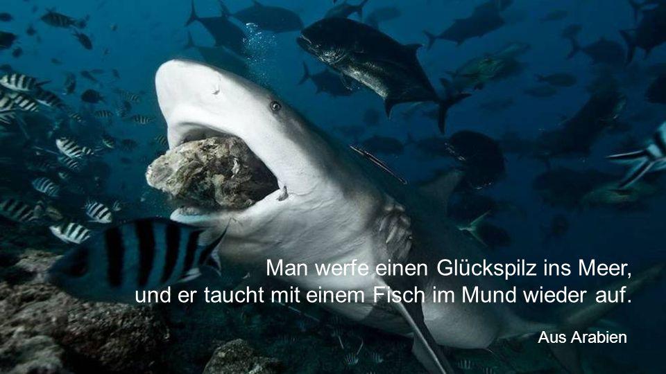 Man werfe einen Glückspilz ins Meer, und er taucht mit einem Fisch im Mund wieder auf. Aus Arabien