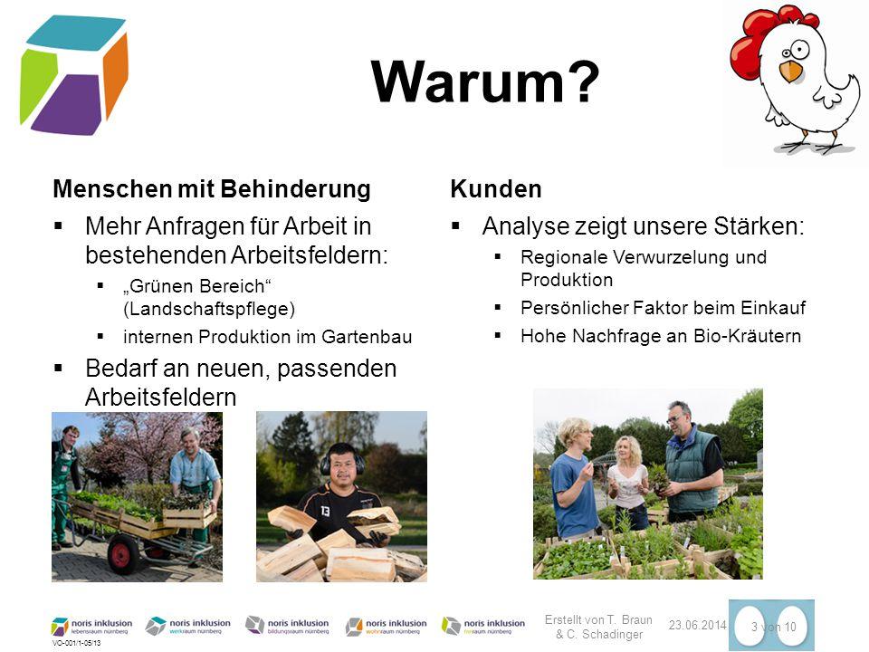 """VO-001/1-05/13 Warum? Menschen mit Behinderung  Mehr Anfragen für Arbeit in bestehenden Arbeitsfeldern:  """"Grünen Bereich"""" (Landschaftspflege)  inte"""