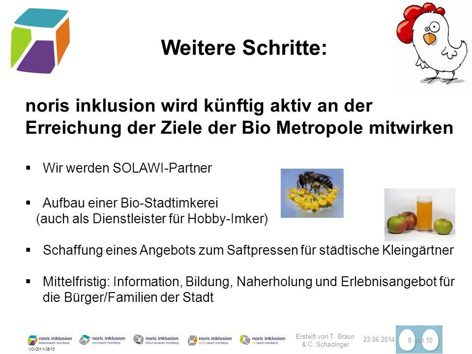 VO-001/1-05/13 Weitere Schritte: Erstellt von T. Braun & C. Schadinger 23.06.2014 8 von 10 noris inklusion wird künftig aktiv an der Erreichung der Zi