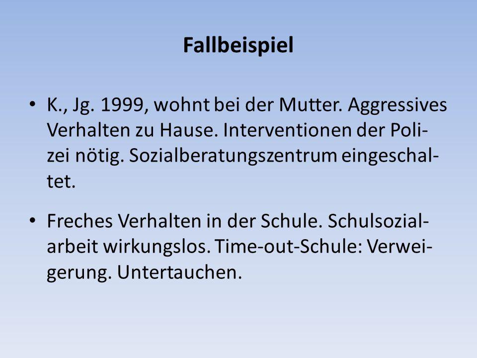 Fallbeispiel K., Jg. 1999, wohnt bei der Mutter. Aggressives Verhalten zu Hause. Interventionen der Poli- zei nötig. Sozialberatungszentrum eingeschal
