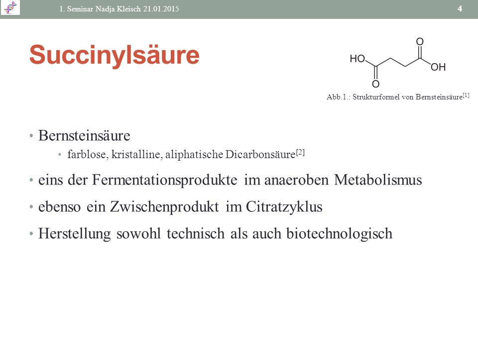 Succinylsäure Bernsteinsäure farblose, kristalline, aliphatische Dicarbonsäure [2] eins der Fermentationsprodukte im anaeroben Metabolismus ebenso ein