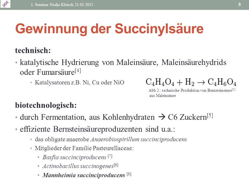 Gewinnung der Succinylsäure technisch: katalytische Hydrierung von Maleinsäure, Maleinsäurehydrids oder Fumarsäure [4] Katalysatoren z.B. Ni, Cu oder