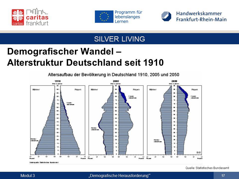"""SILVER LIVING """"Demografische Herausforderung'"""" 17 Modul 3 Demografischer Wandel – Alterstruktur Deutschland seit 1910 Quelle: Statistisches Bundesamt"""