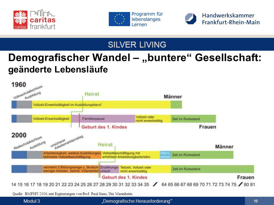 """SILVER LIVING """"Demografische Herausforderung'"""" 18 Modul 3 Demografischer Wandel – """"buntere"""" Gesellschaft: geänderte Lebensläufe Quelle: BMFSFJ 2006, m"""