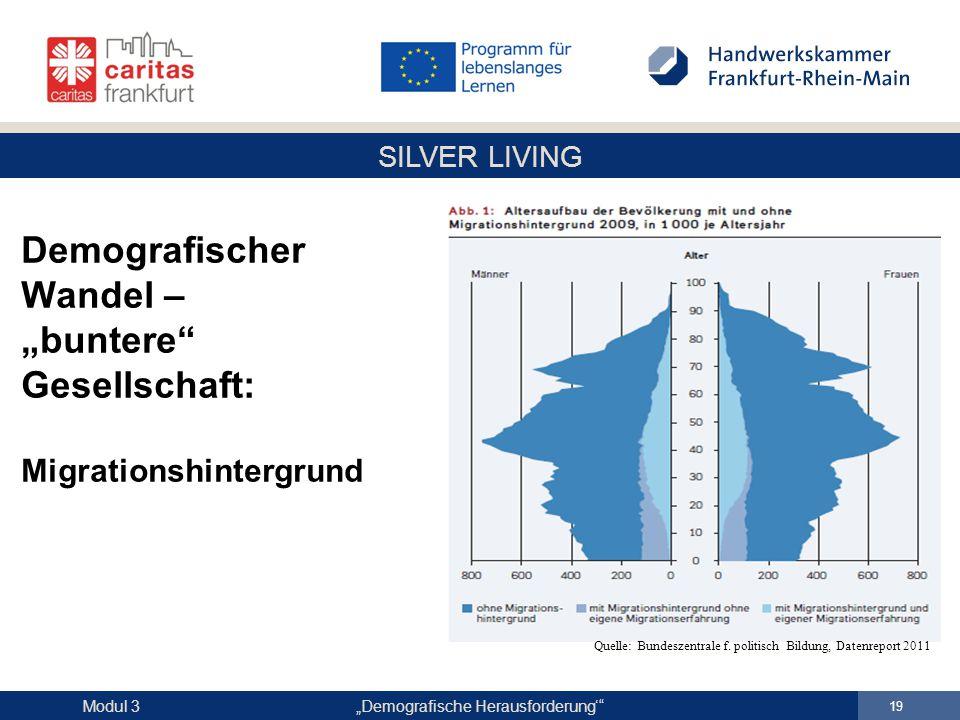 """SILVER LIVING """"Demografische Herausforderung'"""" 19 Modul 3 Demografischer Wandel – """"buntere"""" Gesellschaft: Migrationshintergrund Quelle: Bundeszentrale"""