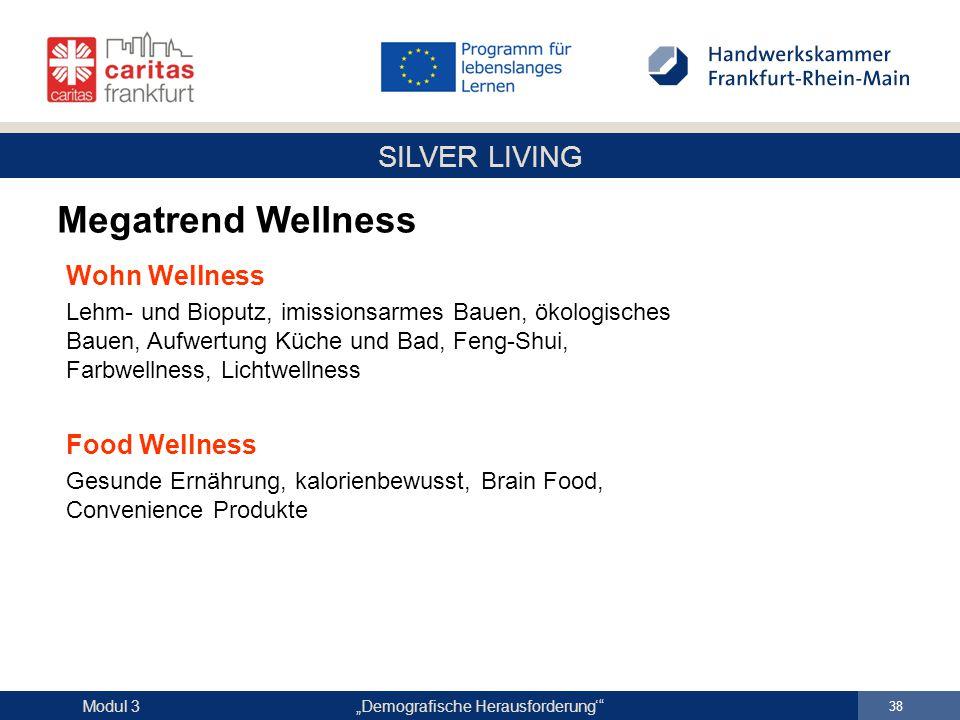 """SILVER LIVING """"Demografische Herausforderung'"""" 38 Modul 3 Wohn Wellness Lehm- und Bioputz, imissionsarmes Bauen, ökologisches Bauen, Aufwertung Küche"""