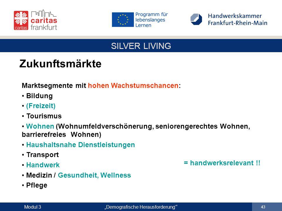 """SILVER LIVING """"Demografische Herausforderung'"""" 43 Modul 3 Zukunftsmärkte Marktsegmente mit hohen Wachstumschancen: Bildung (Freizeit) Tourismus Wohnen"""