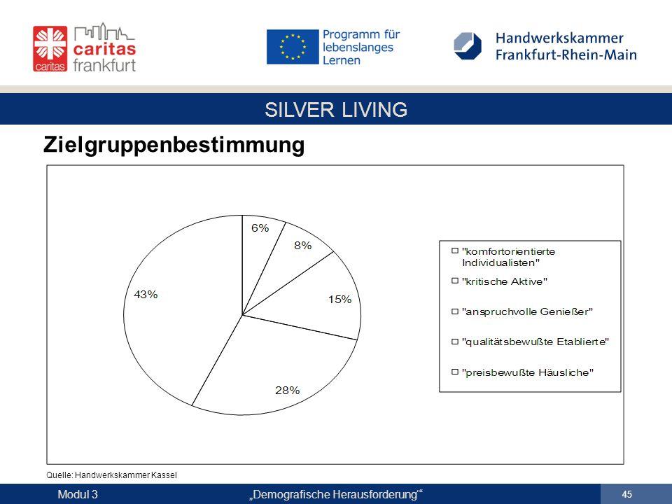 "SILVER LIVING ""Demografische Herausforderung'"" 45 Modul 3 Zielgruppenbestimmung Quelle: Handwerkskammer Kassel"
