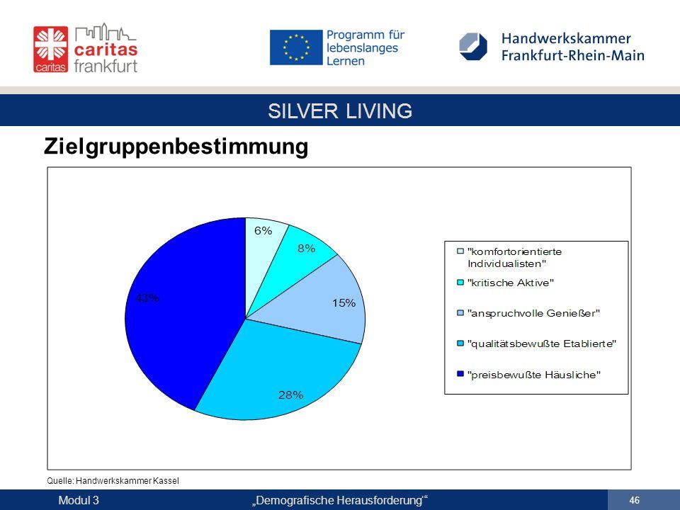 "SILVER LIVING ""Demografische Herausforderung'"" 46 Modul 3 Zielgruppenbestimmung Quelle: Handwerkskammer Kassel"