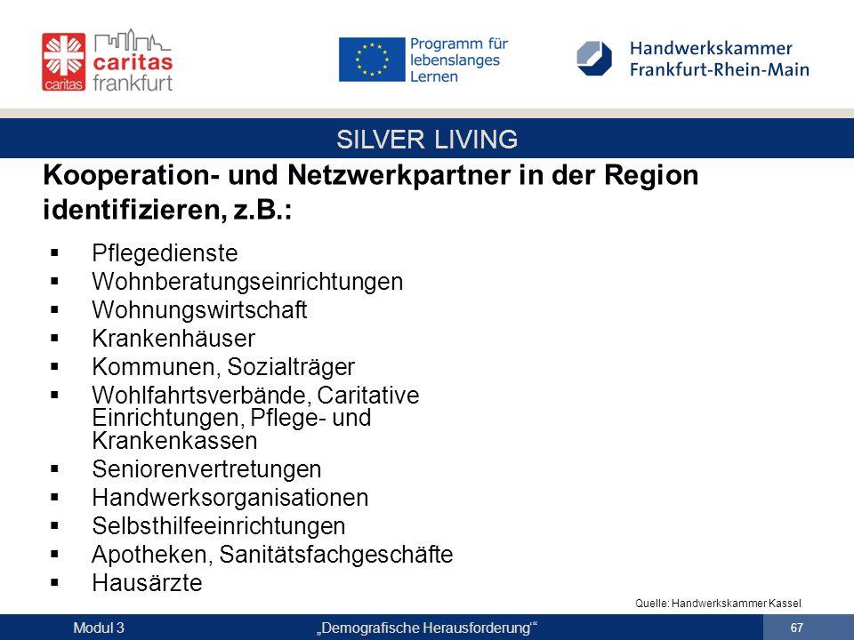 """SILVER LIVING """"Demografische Herausforderung'"""" 67 Modul 3  Pflegedienste  Wohnberatungseinrichtungen  Wohnungswirtschaft  Krankenhäuser  Kommunen"""