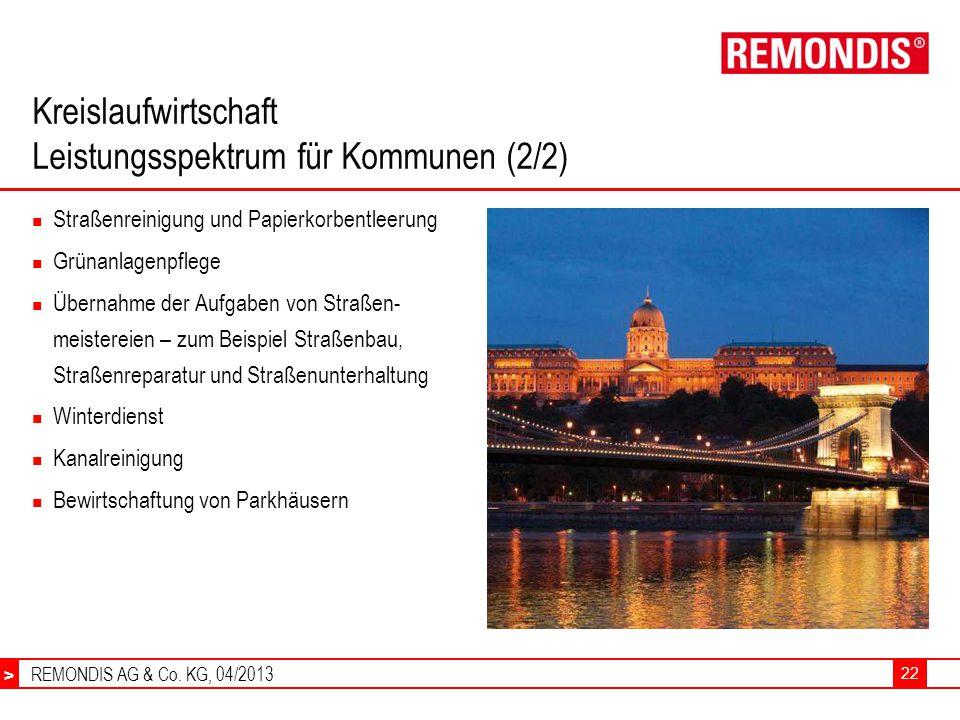 REMONDIS AG & Co.