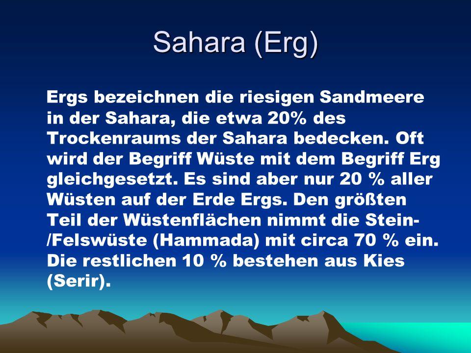 Sahara (Erg) Ergs bezeichnen die riesigen Sandmeere in der Sahara, die etwa 20% des Trockenraums der Sahara bedecken. Oft wird der Begriff Wüste mit d