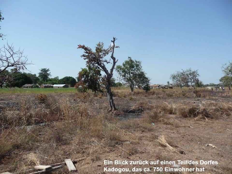 Ein Blick zurück auf einen Teil des Dorfes Kadogou, das ca. 750 Einwohner hat