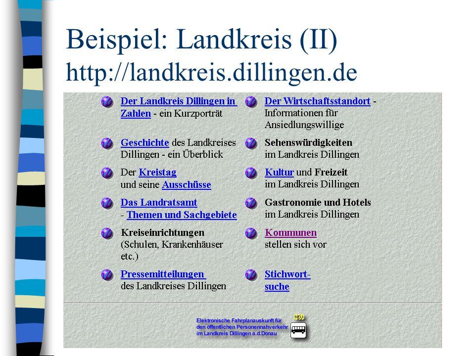 Organisation (II): Finanzstatut des Trägers http://WWW.BUERGER.NET/dillfinanz.html