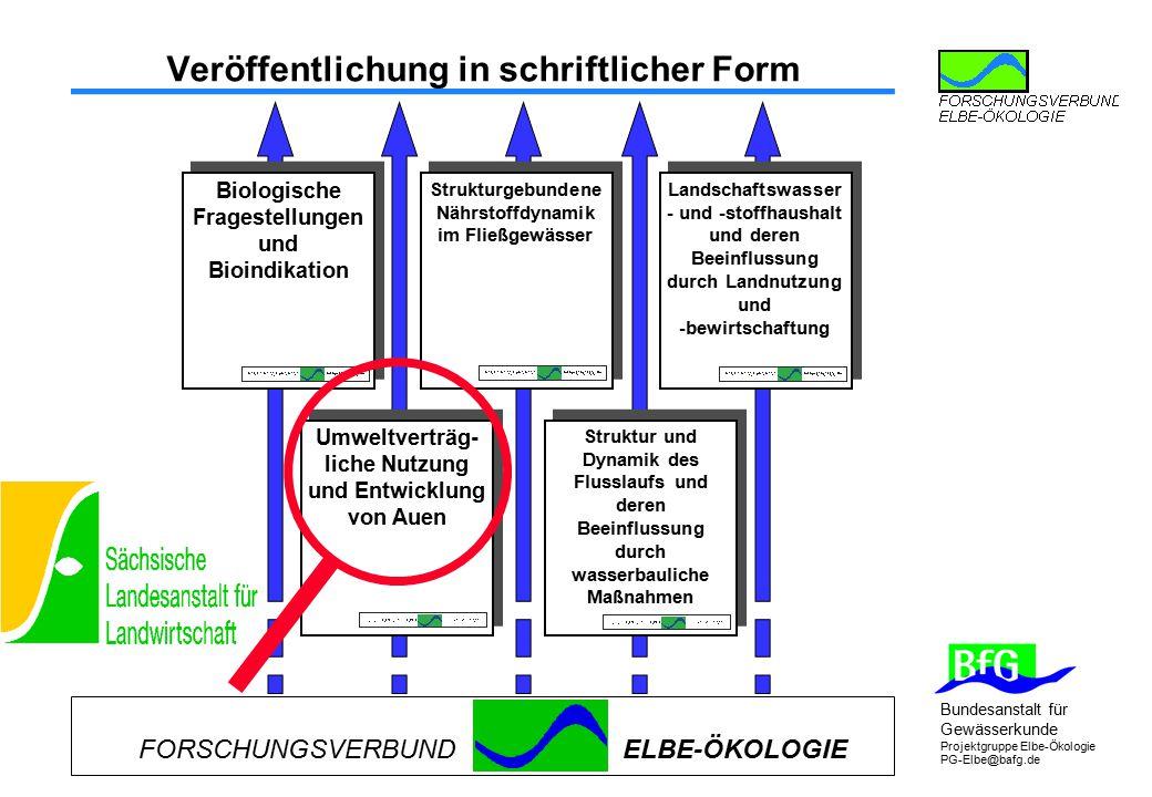 Bundesanstalt für Gewässerkunde Projektgruppe Elbe-Ökologie PG-Elbe@bafg.de Veröffentlichung in schriftlicher Form FORSCHUNGSVERBUNDELBE-ÖKOLOGIE Stru