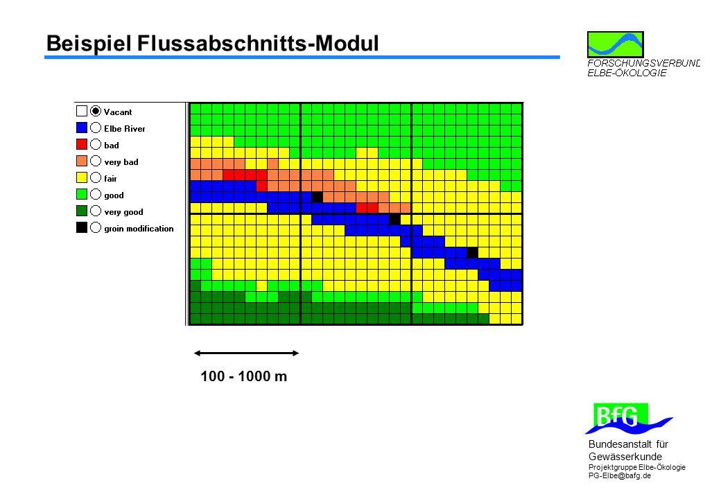 Bundesanstalt für Gewässerkunde Projektgruppe Elbe-Ökologie PG-Elbe@bafg.de Beispiel Flussabschnitts-Modul 100 - 1000 m