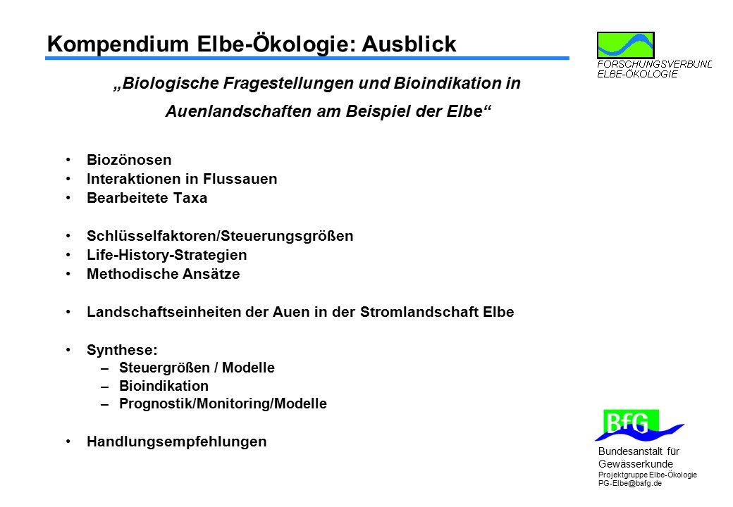 """Bundesanstalt für Gewässerkunde Projektgruppe Elbe-Ökologie PG-Elbe@bafg.de Kompendium Elbe-Ökologie: Ausblick """"Biologische Fragestellungen und Bioind"""