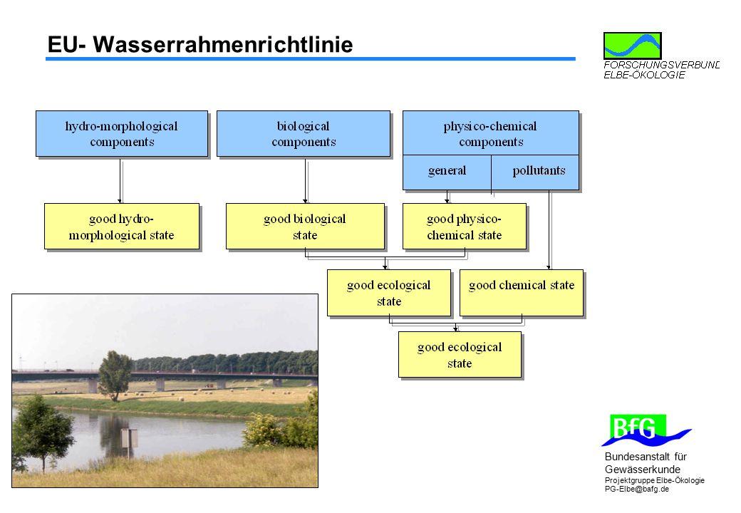 Bundesanstalt für Gewässerkunde Projektgruppe Elbe-Ökologie PG-Elbe@bafg.de EU- Wasserrahmenrichtlinie