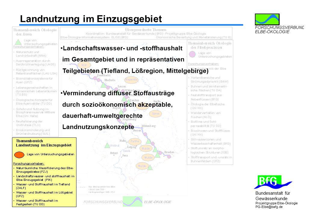 Bundesanstalt für Gewässerkunde Projektgruppe Elbe-Ökologie PG-Elbe@bafg.de Ökologie der Auen Foto: Alfred Toepfer Akademie für Naturschutz (NNA)