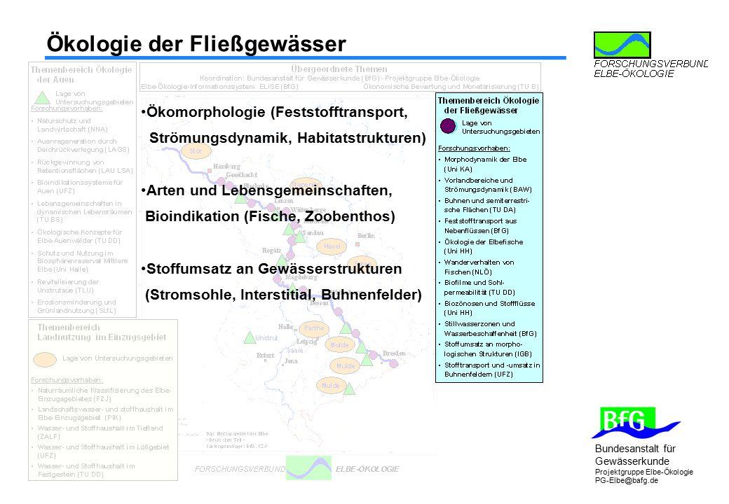 Bundesanstalt für Gewässerkunde Projektgruppe Elbe-Ökologie PG-Elbe@bafg.de Ökologie der Auen Retentionsflächenrück- gewinnung (LAU LSA) Auenregeneration durch Deichrückverlegung (LAGS) Bioindikationssysteme für Auen (UFZ) Lebensgemeinschaften in dynamischen Lebensräumen (TU BS) Schutz und Nutzung im Biosphärenreservat (Uni Halle) Revitalisierung der Unstrutaue (TLU) Konzepte für Elbe- Auenwälder (TU DD) Leitbilder Naturschutz und Landwirtschaft (NNA) Systeme der Grünlandnutzung (LfL)