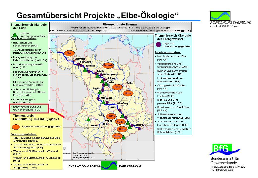 """Bundesanstalt für Gewässerkunde Projektgruppe Elbe-Ökologie PG-Elbe@bafg.de Gesamtübersicht Projekte """"Elbe-Ökologie"""""""