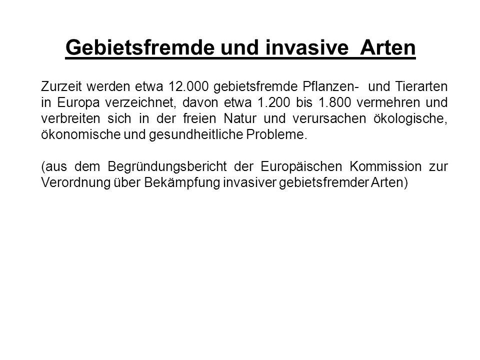 Gebietsfremde und invasive Arten Zurzeit werden etwa 12.000 gebietsfremde Pflanzen- und Tierarten in Europa verzeichnet, davon etwa 1.200 bis 1.800 ve