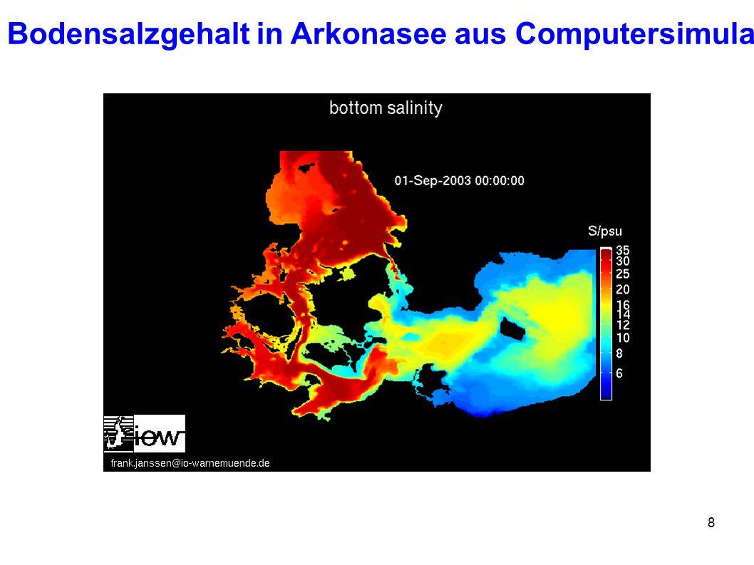 8 Bodensalzgehalt in Arkonasee aus Computersimulation
