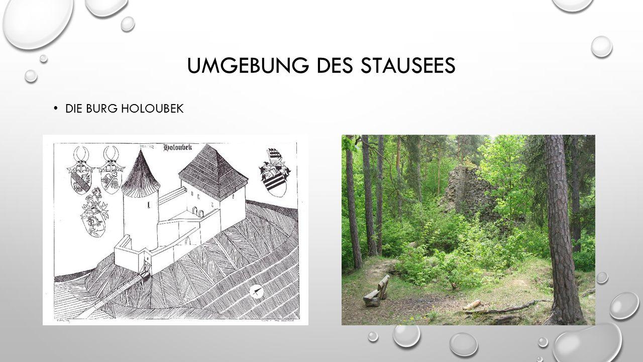 UMGEBUNG DES STAUSEES DIE BURG HOLOUBEK