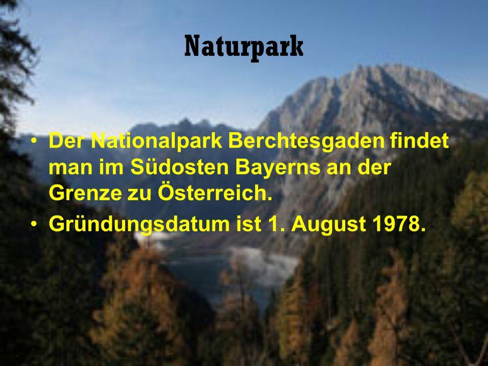 Naturpark Der Nationalpark Berchtesgaden findet man im Südosten Bayerns an der Grenze zu Österreich. Gründungsdatum ist 1. August 1978.