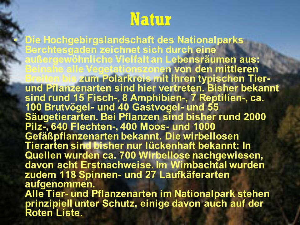 Natur Die Hochgebirgslandschaft des Nationalparks Berchtesgaden zeichnet sich durch eine außergewöhnliche Vielfalt an Lebensräumen aus: Beinahe alle Vegetationszonen von den mittleren Breiten bis zum Polarkreis mit ihren typischen Tier- und Pflanzenarten sind hier vertreten.