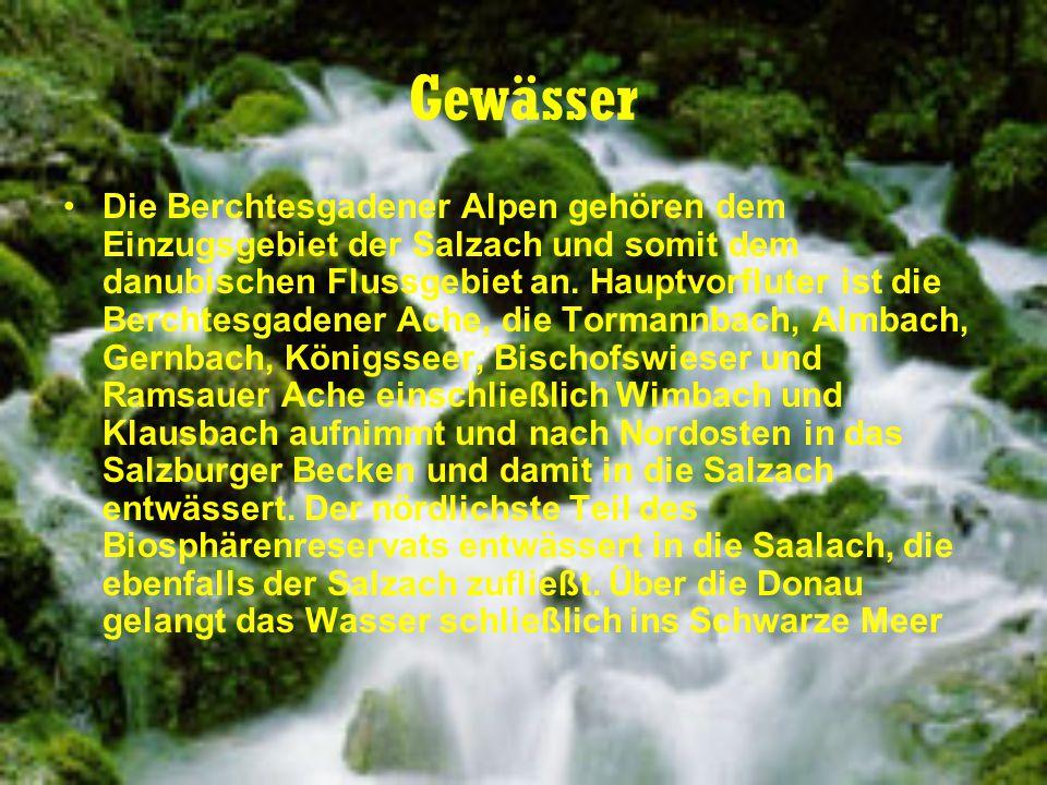 Gewässer Die Berchtesgadener Alpen gehören dem Einzugsgebiet der Salzach und somit dem danubischen Flussgebiet an. Hauptvorfluter ist die Berchtesgade