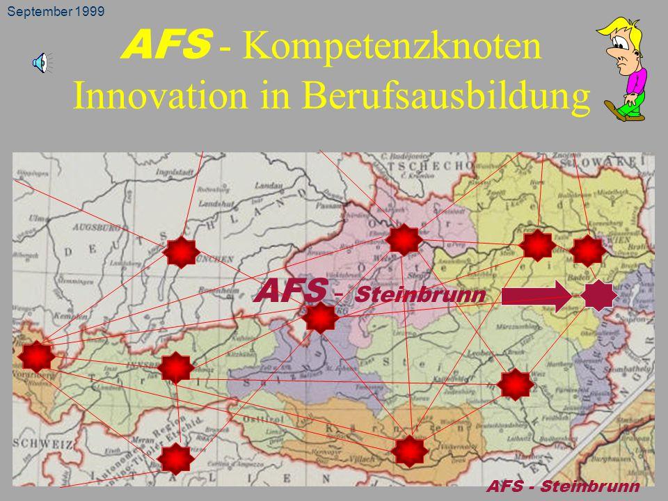 AFS - Kompetenzknoten Innovation in Berufsausbildung AFS - Steinbrunn September 1999