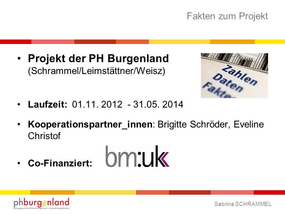 Fakten zum Projekt Projekt der PH Burgenland (Schrammel/Leimstättner/Weisz) Laufzeit: 01.11.