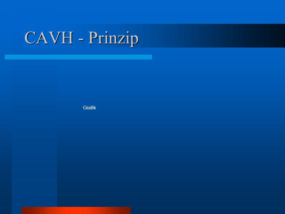 CAVH - Prinzip Grafik