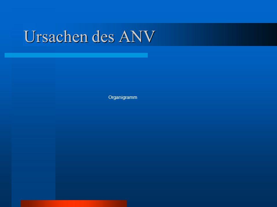 Ursachen des ANV Organigramm