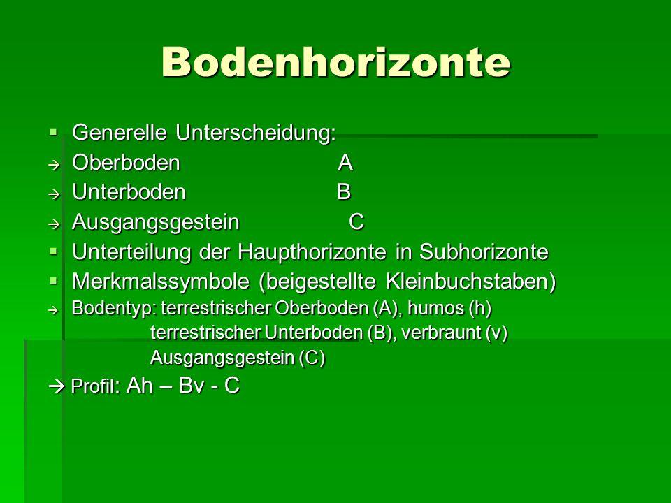 Bodenhorizonte  Generelle Unterscheidung:  Oberboden A  Unterboden B  Ausgangsgestein C  Unterteilung der Haupthorizonte in Subhorizonte  Merkmalssymbole (beigestellte Kleinbuchstaben)  Bodentyp: terrestrischer Oberboden (A), humos (h) terrestrischer Unterboden (B), verbraunt (v) terrestrischer Unterboden (B), verbraunt (v) Ausgangsgestein (C) Ausgangsgestein (C)  Profil : Ah – Bv - C
