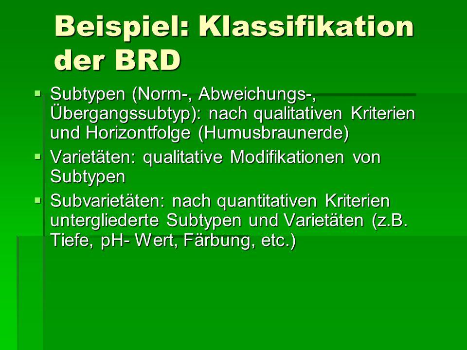 Beispiel: Klassifikation der BRD  Subtypen (Norm-, Abweichungs-, Übergangssubtyp): nach qualitativen Kriterien und Horizontfolge (Humusbraunerde) 