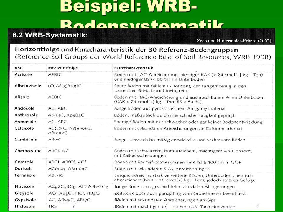 Beispiel: WRB- Bodensystematik