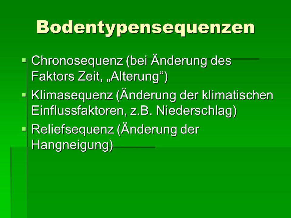 """Bodentypensequenzen  Chronosequenz (bei Änderung des Faktors Zeit, """"Alterung"""")  Klimasequenz (Änderung der klimatischen Einflussfaktoren, z.B. Nied"""