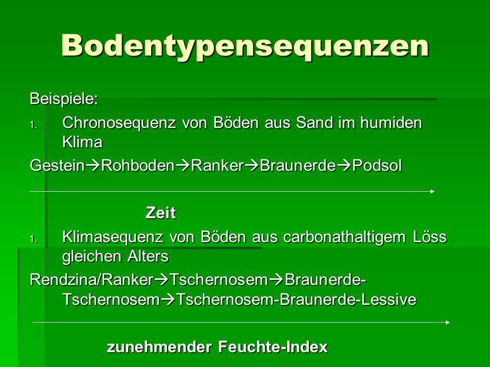 Bodentypensequenzen Beispiele: 1. Chronosequenz von Böden aus Sand im humiden Klima Gestein  Rohboden  Ranker  Braunerde  Podsol Zeit 1. Klimasequ