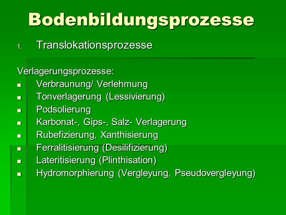 Bodenbildungsprozesse 1. Translokationsprozesse Verlagerungsprozesse: Verbraunung/ Verlehmung Verbraunung/ Verlehmung Tonverlagerung (Lessivierung) T