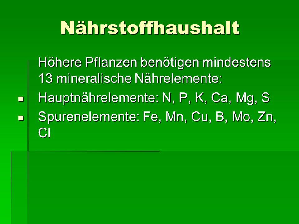 Nährstoffhaushalt Höhere Pflanzen benötigen mindestens 13 mineralische Nährelemente: Hauptnährelemente: N, P, K, Ca, Mg, S Hauptnährelemente: N, P, K,