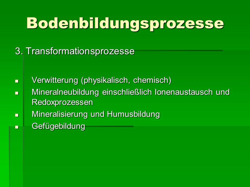 Bodenbildungsprozesse 3. Transformationsprozesse Verwitterung (physikalisch, chemisch) Verwitterung (physikalisch, chemisch) Mineralneubildung einsc