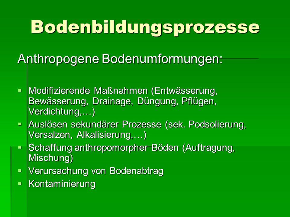Bodenbildungsprozesse Anthropogene Bodenumformungen:  Modifizierende Maßnahmen (Entwässerung, Bewässerung, Drainage, Düngung, Pflügen, Verdichtung,…)