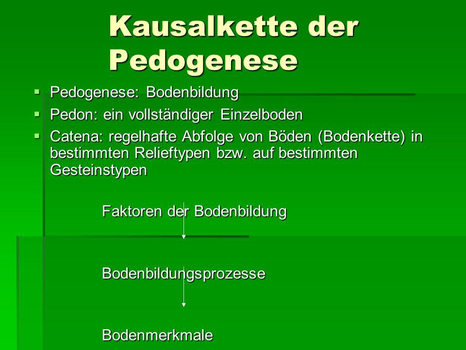 Kausalkette der Pedogenese  Pedogenese: Bodenbildung  Pedon: ein vollständiger Einzelboden  Catena: regelhafte Abfolge von Böden (Bodenkette) in bestimmten Relieftypen bzw.